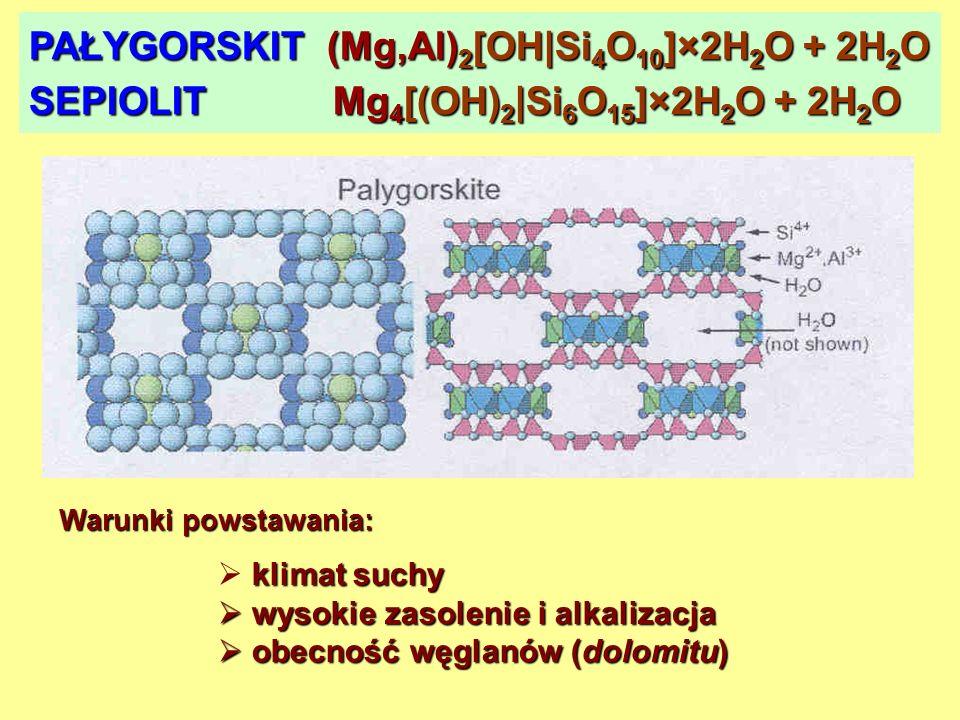 PAŁYGORSKIT (Mg,Al)2[OH|Si4O10]×2H2O + 2H2O